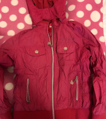 Ciklama jaknicka