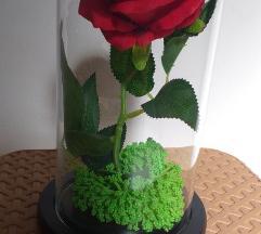 Magepsana roza