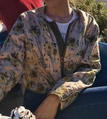 mango jaknice