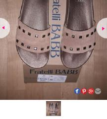 Novi papuchi