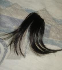 Prirodna kosa shishki