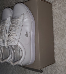 Lacoste pearl white sneakers