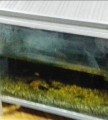 Akvarium 1×1 m