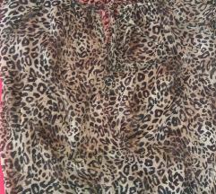 Tigresta koshula