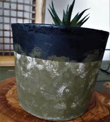 Саксија за кактус 100ден