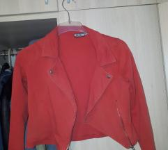 Шеќерна боја палтенце