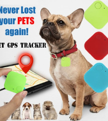 Pet Dog Real Time Car Tracking